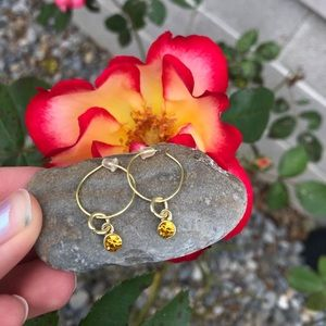 Jewelry - Gold Earrings with Charm